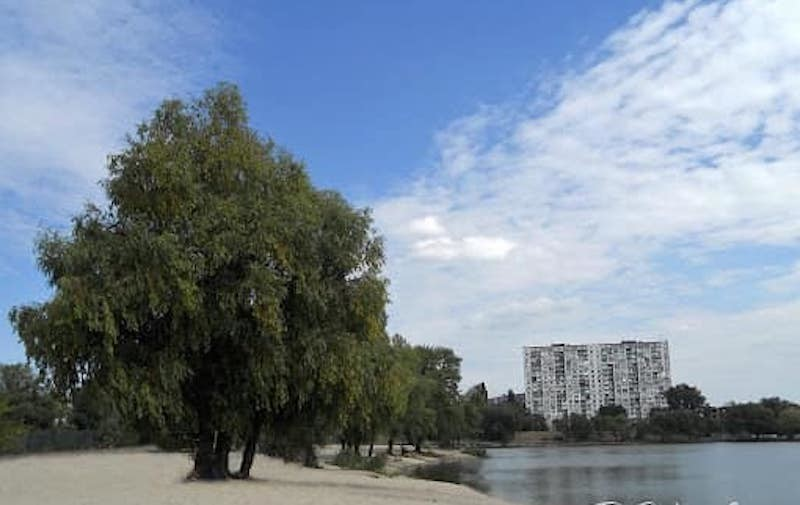 Київські канікули Віктора Цоя