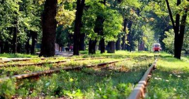 Столичній громаді повернули землі Пуща-Водицького лісництва вартістю понад 105 мільйонів гривень