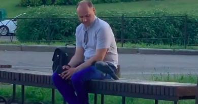 Киян розчулило відео, як чоловік гладив ворону. Відео