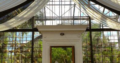 На ВДНХ открылась обновленная оранжерея. Фото