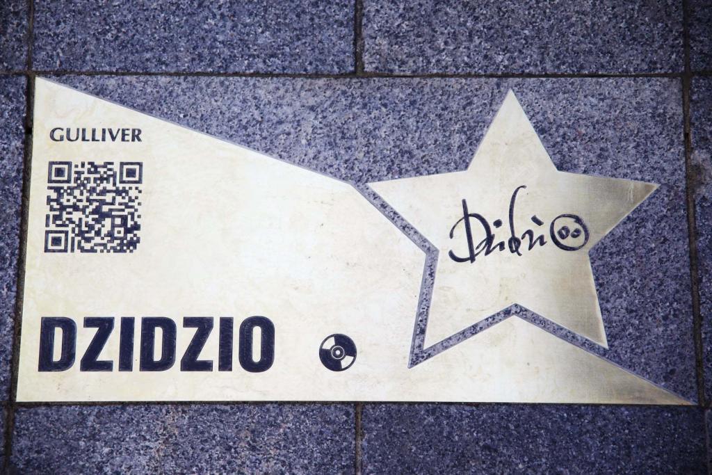 открыли звезду DZIDZIO